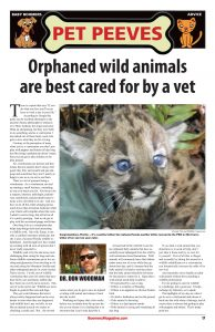 Pet Peeves - Orphaned wild animals