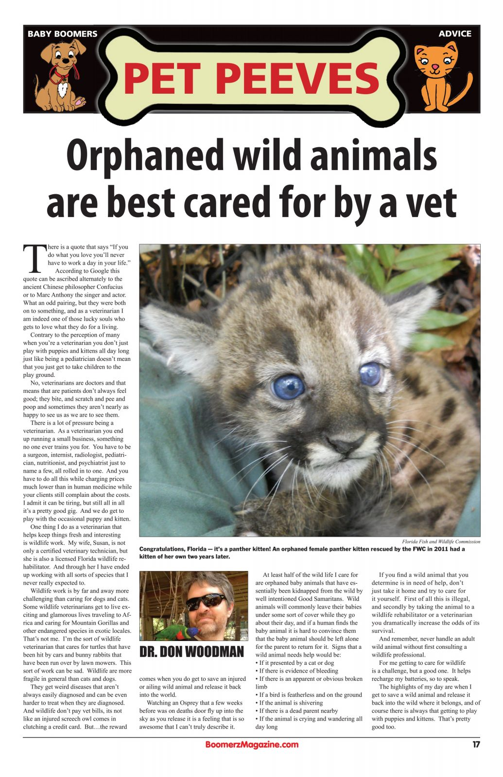 Orphaned wild animals bared for by vet