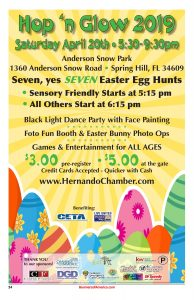 Hernando Chamber Hop N Glow Event