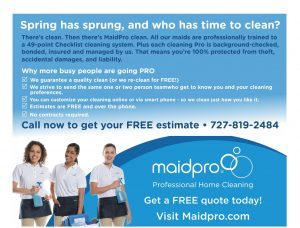 Maid Pro - It's About Time