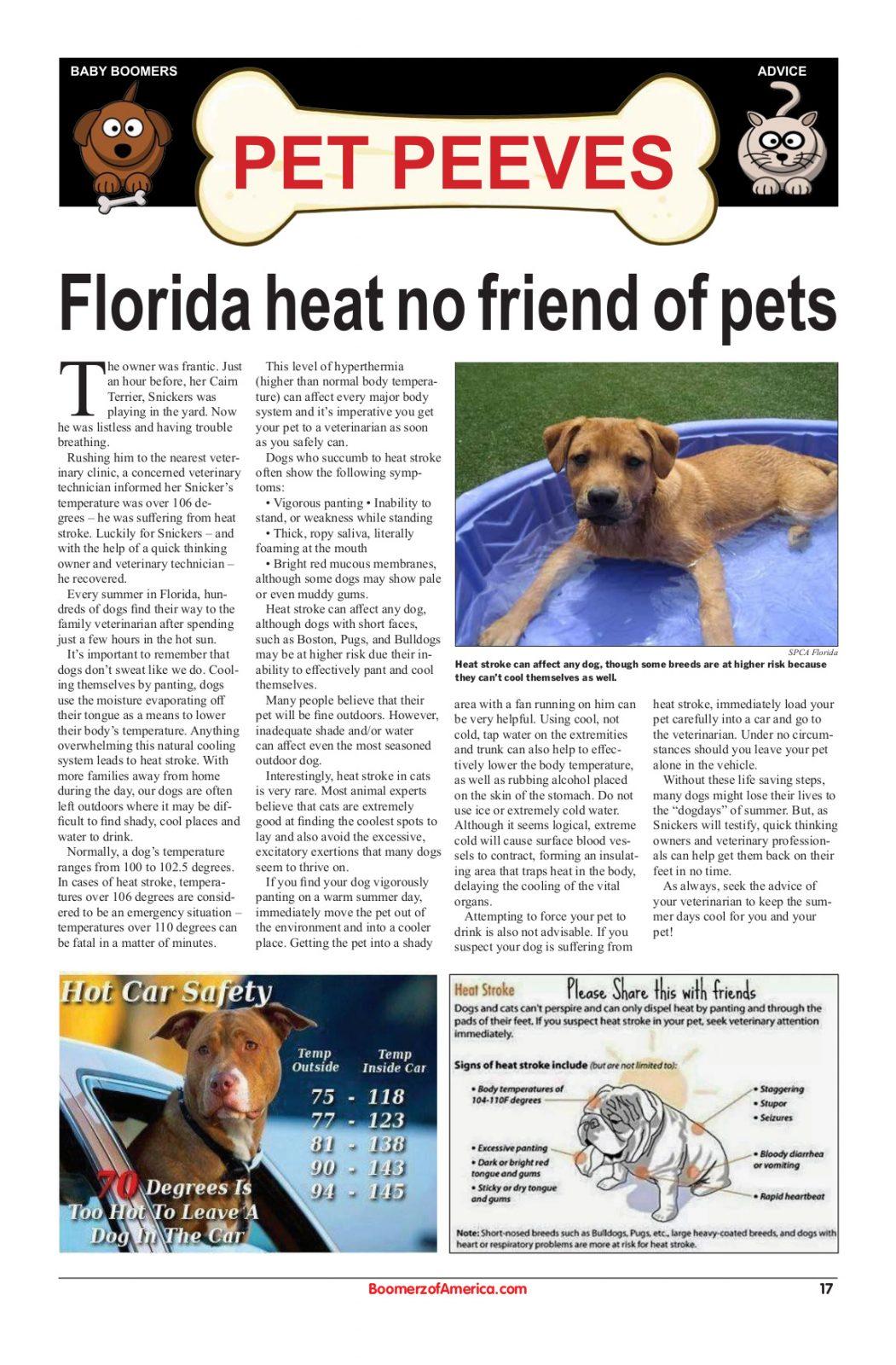 Boomerz Pet Peves Florida Heat No Friend of Pets