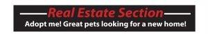 Real Estate Section Header